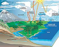 This image demonstrate the major components of the global water cycle, and show how these components contribute to regulating the cycling of water in our environment. For related animated go <a href=